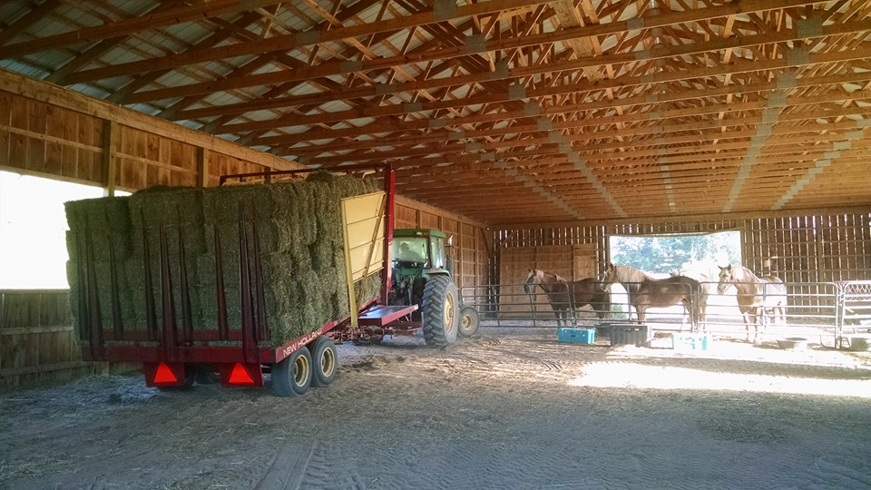 Hay and Drafts Aug 2015