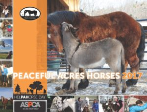 Peaceful Acres 2017 CALENDAR FRONT COVER (1)