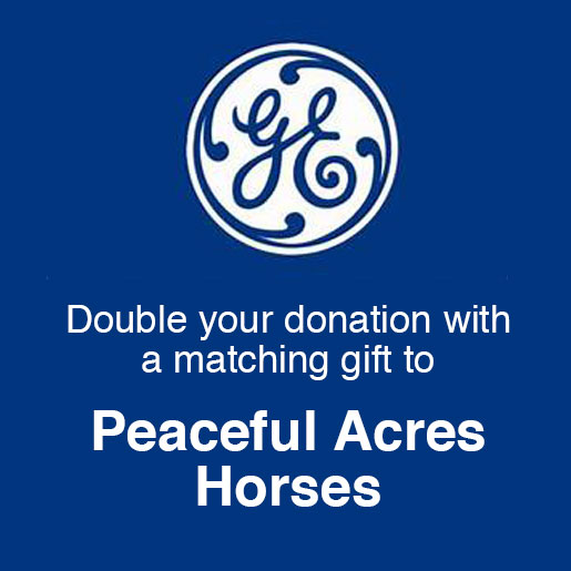 The program supports employees in their personal philanthropy/charitable giving by providing a 1:1 match. Today, the GE Foundation Matching Gifts ...